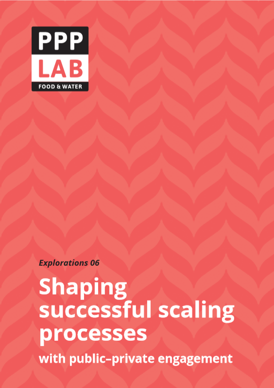 Shaping successful scaling processes with public–private engagement
