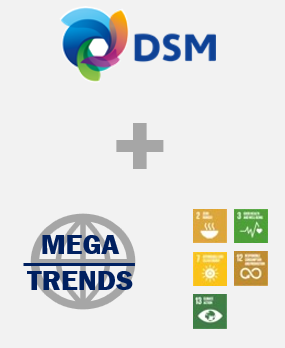 DSM competences and purpose