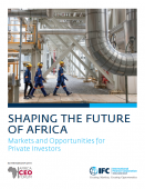 Shaping the future of Africa: Markets and opportunities for private investors