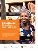 Critical capital for African agrifood SMEs