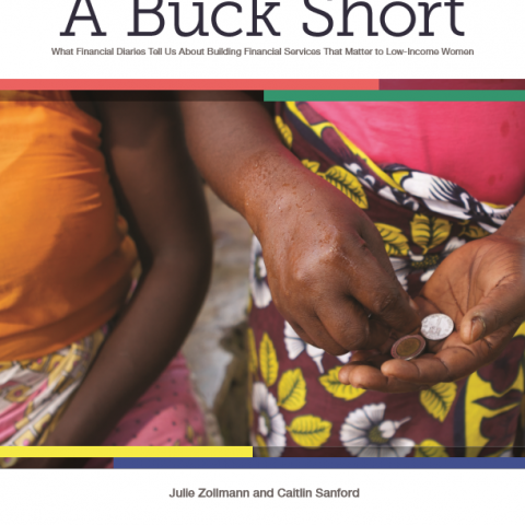 A buck short - What financial diaries tell us about building financial services that matter to low-income women