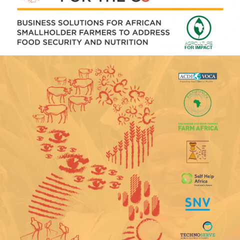 8 Views for the G8: Business Solutions for African Smallholder Farmers to Address Food Security and nutrition