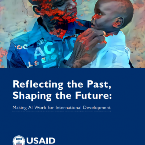 Reflecting the past, shaping the future: Making AI work for international development