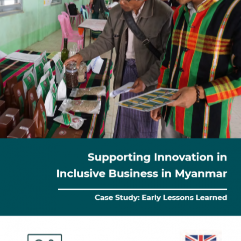 Supporting Innovation in  Inclusive Business in Myanmar