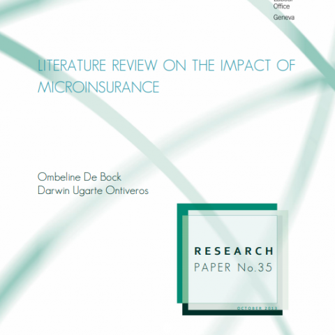 Literature review on the impact of microinsurance