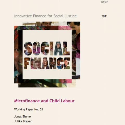 Microfinance and Child Labour