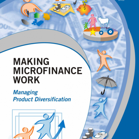 Making Microfinance Work: Managing Product Diversification