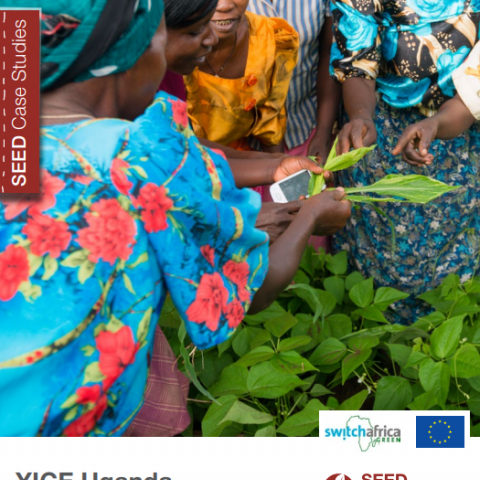 YICE Uganda. Improving access to training, funding, and markets for rural farmers. SEED Case Study Series.