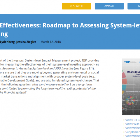 Measuring effectiveness: Roadmap to assessing system-level and SDG investing