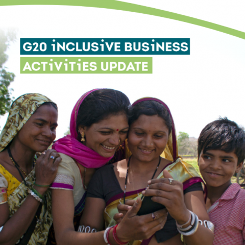 G20 inclusive busines activities update