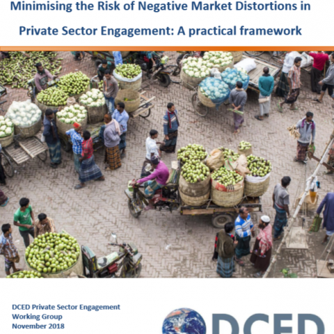 Minimising the Risk of Negative Market Distortions in  Private Sector Engagement