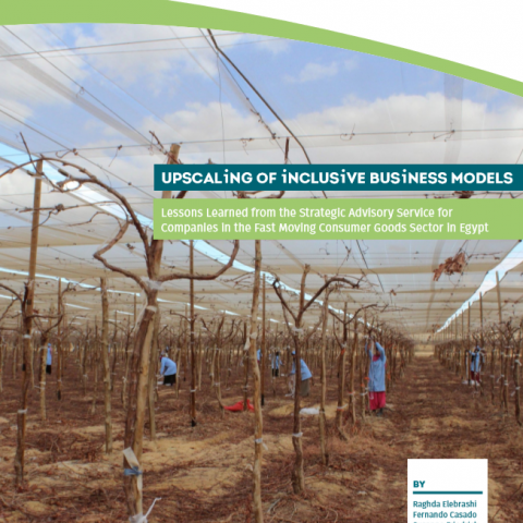 Upscaling of inclusive business models
