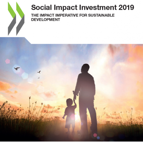 social impact investment 2019 cover