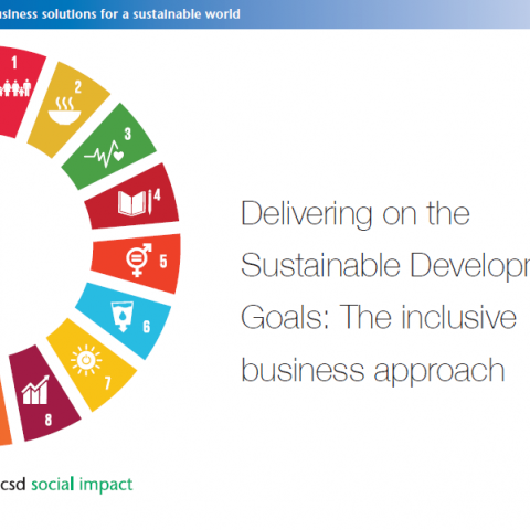 Delivering on the SDGs