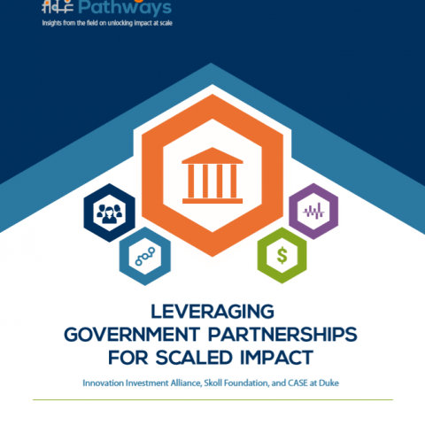 Government partnerships for scaled impact