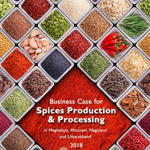 Business Case for Spices Production & Processing