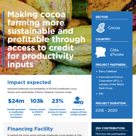Making cocoa farming more sustainable and profitable through access to credit for productivity inputs