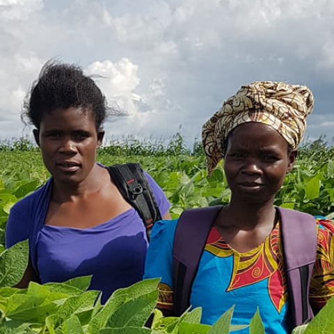 Women farmers © Solidaridad Southern Africa