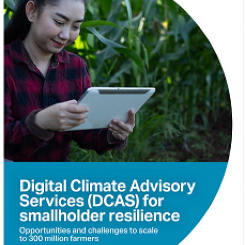 Digital Climate Advisory Services (DCAS) for smallholder resilience