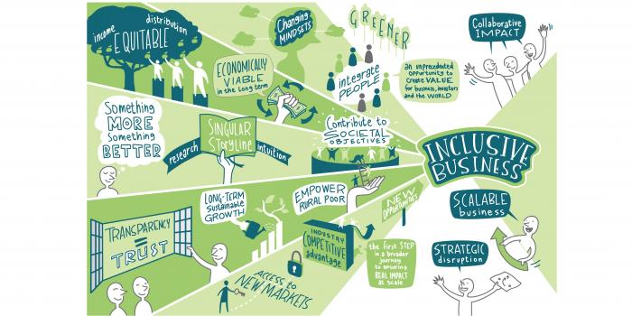 Summary Making the Inclusive Business Case