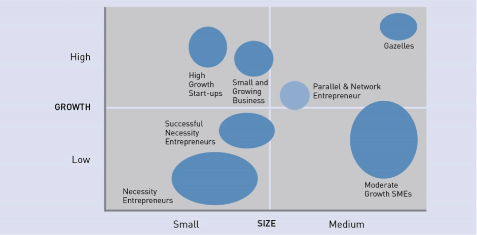 """ SME Segments Source: DGGF 2015 (Intellecap research)"""